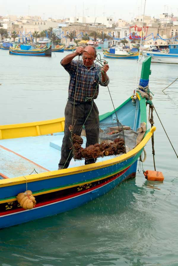 malta-freshly-caught-crabs-by-maysun-abu-khdeir-granados